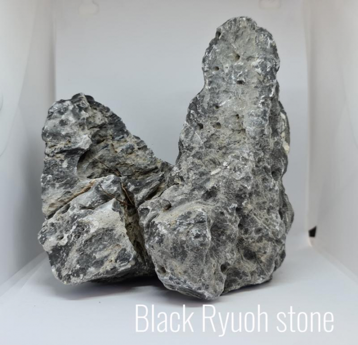 ROCHA BLACK RYUOH/SEIRYU STONE Kg